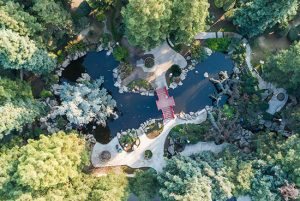 bird's eye view of a lush private pond